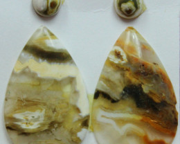 12.00 CTS OCEAN JASPER PAIR 4 STONES FOR EARRINGS