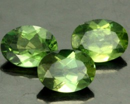 3.52 CTS PARCEL OF 3 NATURAL APATTIE - YELLOW GREEN [SB896]