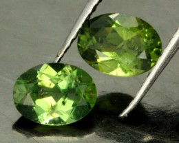 2.49 CTS PARCEL OF 2 NATURAL APATTIE - YELLOW GREEN [SB901]