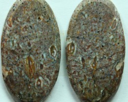 DINOSAUR BONE PAIR OF FOSSIL STONES  15.35 CTS