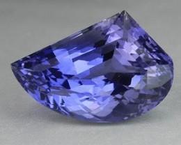 9.68Cts Natural Tanzanian Iolite Fancy Cut