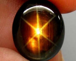7.77 Carat Black Star Sapphire - Gorgeous