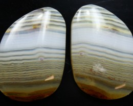 19.30 CTS WYOMING AGATE PAIR PERFECT FOR EARRINGS