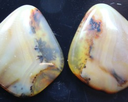 17.05 CTS WYOMING AGATE PAIR PERFECT FOR EARRINGS