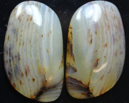 29.40 CTS WYOMING AGATE PAIR PERFECT FOR EARRINGS