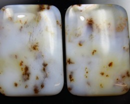 29.55 CTS DENDRITIC AGATE PAIR OF POLISHED STONES