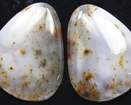 22.60 CTS DENDRITIC AGATE PAIR OF POLISHED STONES