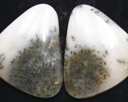 22.90 CTS DENDRITIC AGATE PAIR OF POLISHED STONES