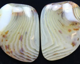 24.90 CTS WYOMING AGATE PAIR OF POLISHED STONES