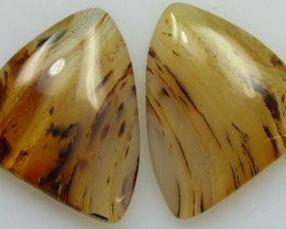 18.30 CTS WYOMING AGATE PAIR OF POLISHED STONES