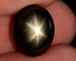 12.78 CTS BLACK  6 STAR SAPPHIRE FROM ASIA  [SAP40]