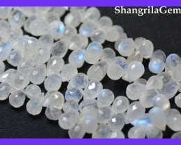 8mm - 11mm Rainbow Moonstone briolettes 25 gems whrb02