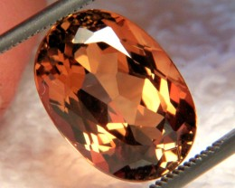 8.09 Carat VVS1 South American Topaz - Gorgeous