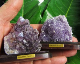 O.334 KILO  TWO AMETHYST SPECIMENS  ON WOOD STAND MS 1915
