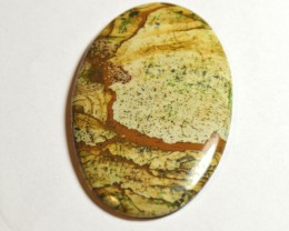 Sahara Picture Jasper 64mm Amazing!