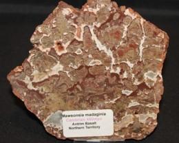 Stromatolite Madiganites mawsoni slice Australia (GR27)