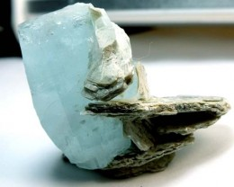 AQUAMARINE SPECIMEN COLLECTOR PC 188 CTS  TBM-22