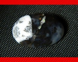 18x13mm 10cts Natural Dendritic Agate Cab Stone Y86