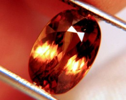 3.37 Carat VS Golden Amber Sphene - Flashy, Rare, Beautiful