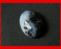 18x13mm 11cts Natural Dendritic Agate Cab Stone Y114