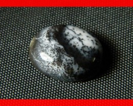 17x13mm 11cts Natural Dendritic Agate Cab Stone Y100