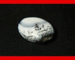 18x10mm 4cts Natural Dendritic Agate Cab Stone Y16