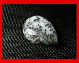 17x12mm 6cts Natural Dendritic Agate Cab Stone Y45