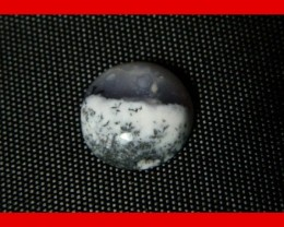 12x5mm 5cts Natural Dendritic Agate Cab Stone Y92
