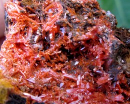 "AUSTRALIAN MINERAL ""CROCOITE"" 385 CTS FROM TASMANIA GG 1120"