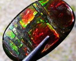 3.96 CTS CANADIAN AMMOLITE -POLISHED-  [ST7071]5
