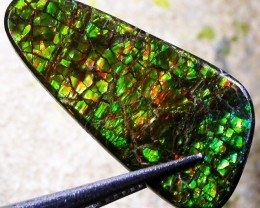 7.05 CTS CANADIAN AMMOLITE -POLISHED-  [ST7079]