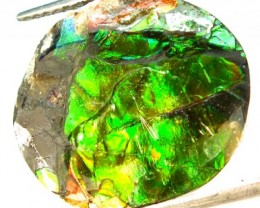 21.10  CTS CANADIAN AMMOLITE PREFINISHED  TBG-285