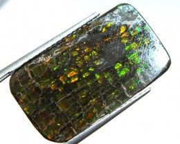 10.85  CTS CANADIAN AMMOLITE PREFINISHED   TBG-295