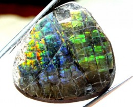 18.10  CTS CANADIAN AMMOLITE PREFINISHED    TBG-298