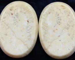 28.80 CTS  PAIR OF POLISHED CORAL NATURAL STONES