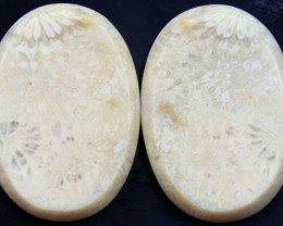 26.95 CTS  PAIR OF POLISHED CORAL NATURAL STONES