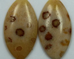16.60 CTS  PAIR OF POLISHED CORAL NATURAL STONES