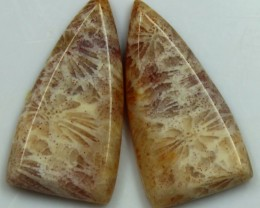 13.40 CTS  PAIR OF POLISHED CORAL NATURAL STONES