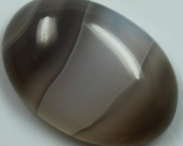24.75 CTS AGATE POLISHED STONE GREAT RANGE IN STORE