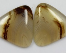 12.95 CTS AGATE PAIR POLISHED STONES GREAT RANGE IN STORE
