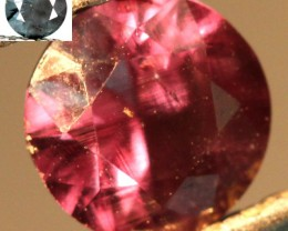 COLOUR CHANGE GARNET 1.01  CTS PG-316