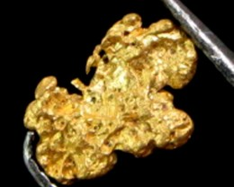 AUSTRALIAN  GOLD NUGGET 0.44 GRAMS  LGN 1104