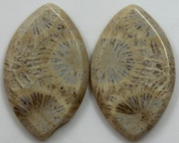 23.65 CTS  PAIR OF POLISHED CORAL NATURAL STONES