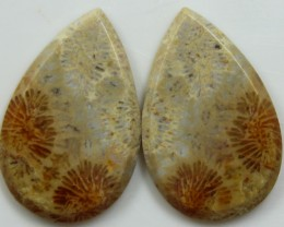 32.55 CTS  PAIR OF POLISHED CORAL NATURAL STONES