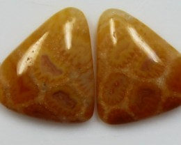 5.45  CTS  PAIR OF POLISHED CORAL NATURAL STONES