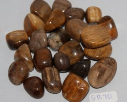 Fossil Wood Polished Tumbles, 23 app QLD, Australia (GR70)