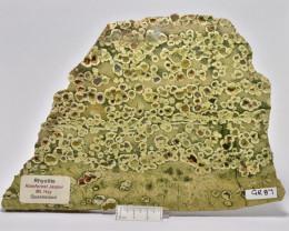Rhyolite Rainforest Jasper, QLD Australia (GR87)