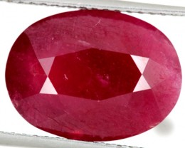 RUBY RASBERRY RED 18.50 CTS   SG-1878