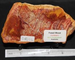 Fossil Wood Slice, Jurassic, QLD, Australia (GR116)