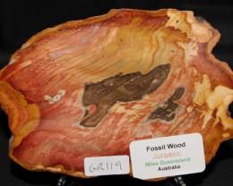 Fossil Wood Slice, Jurassic, QLD, Australia (GR119)